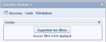 SAP BusinessObjects Webi - Lien élément 9