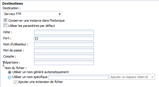 SAP BusinessObjects Webi - Planifier un document 18